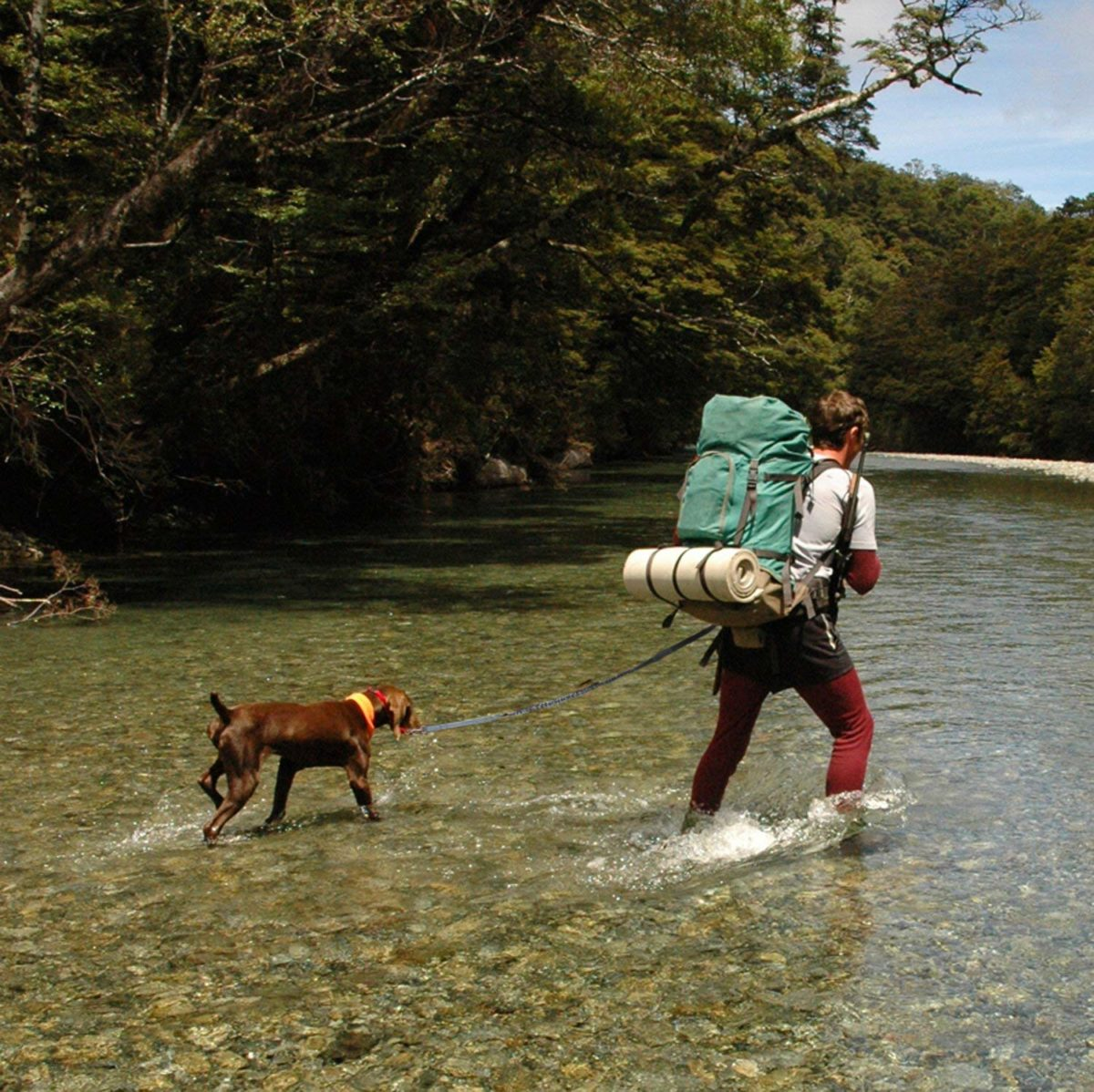 Backpacking, A Great Outdoor Activity
